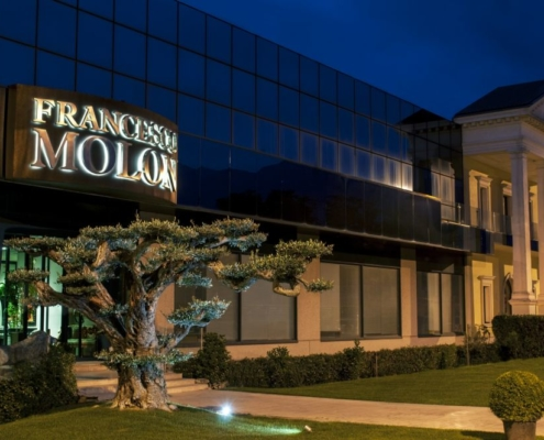 Francesco Molon main offices
